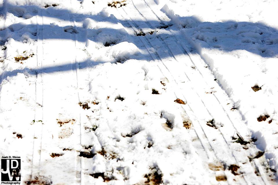 100213_JDW_Snow_0208