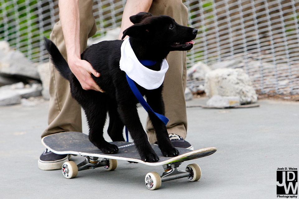 100403_JDW_Skatepark_0366