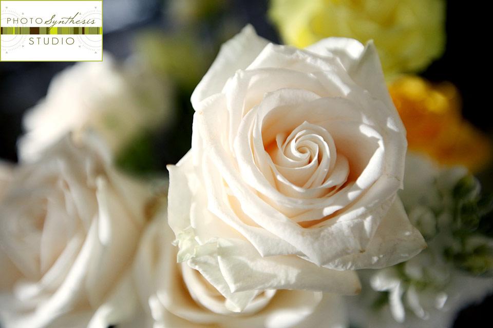 100508_JDW_Wedding_1502