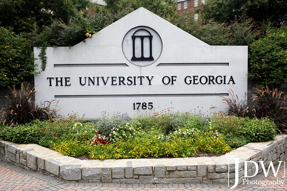 accepted essays by university of georgia